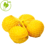 Dag Vers Lemon Per Pack / 新鲜柠檬 每袋