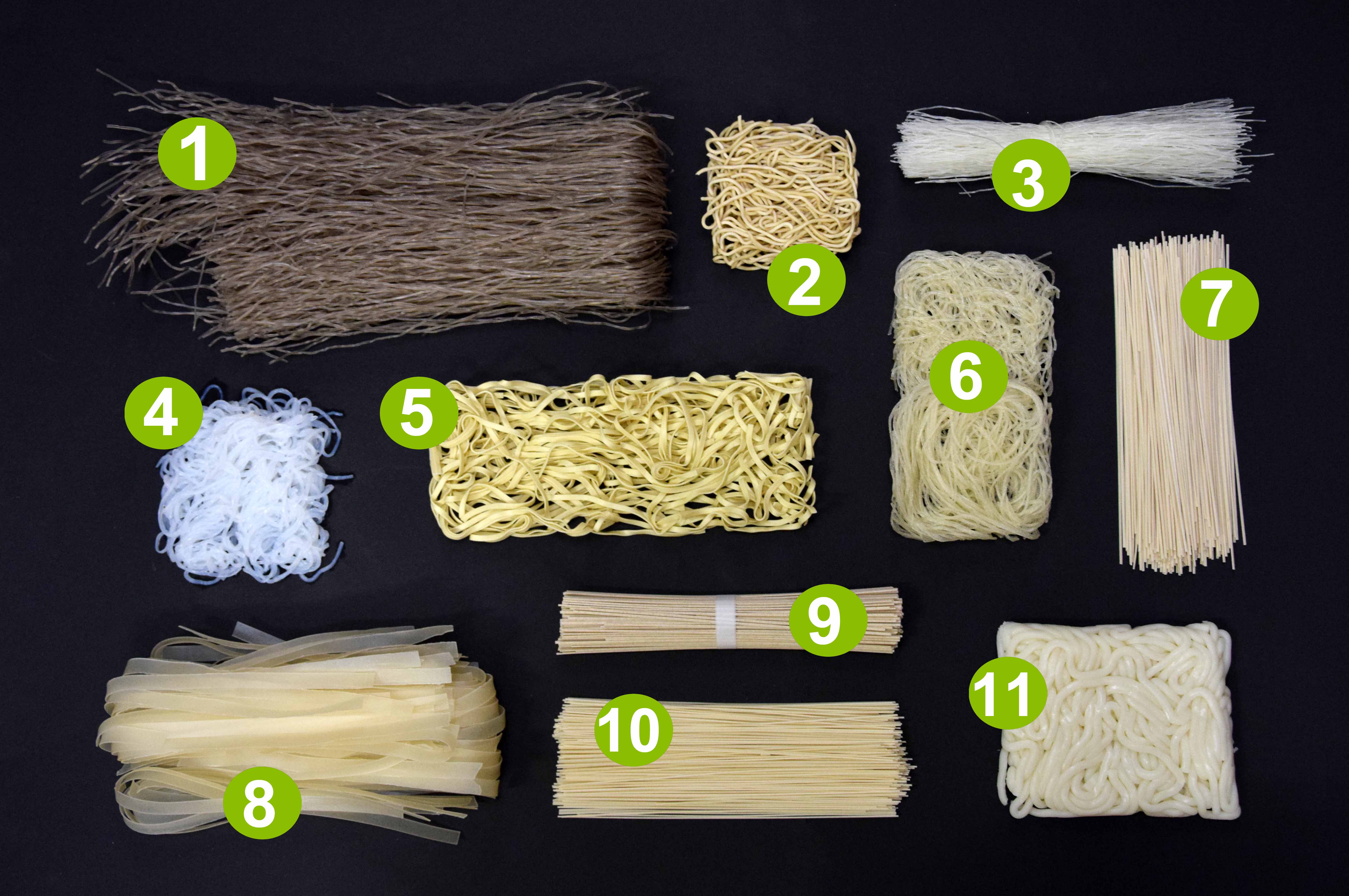 Image of 11 different types of noodles